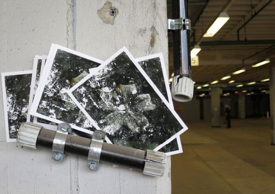 Die Fundblume Postkarten