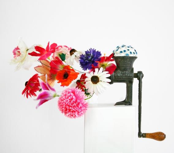Das Blumenthier von Herrn Zinn