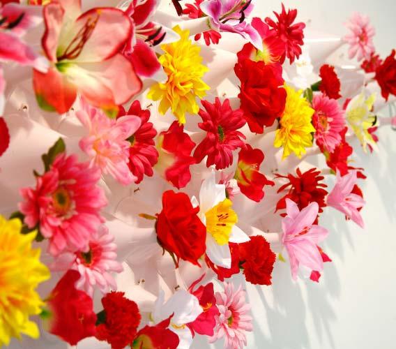 Trichterblumen